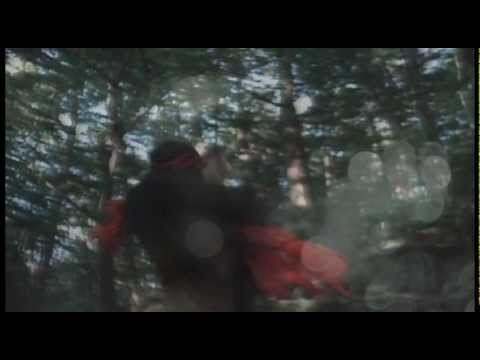 THE NOVEMBERS - Harem(MV)