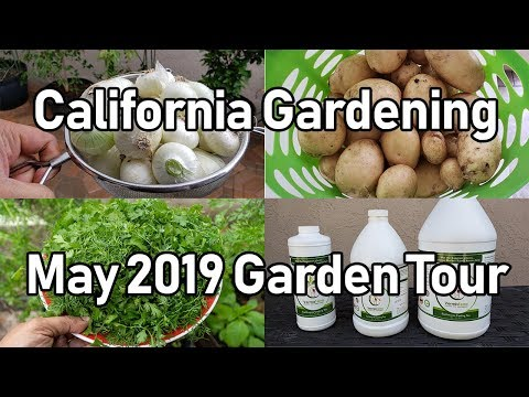 California Gardening Garden Tour – May 2019   Organic Gardening Tips & Advice