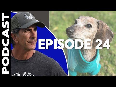 Older Dogs Need LOVE - Video Podcast - Robert Cabral Dog Training
