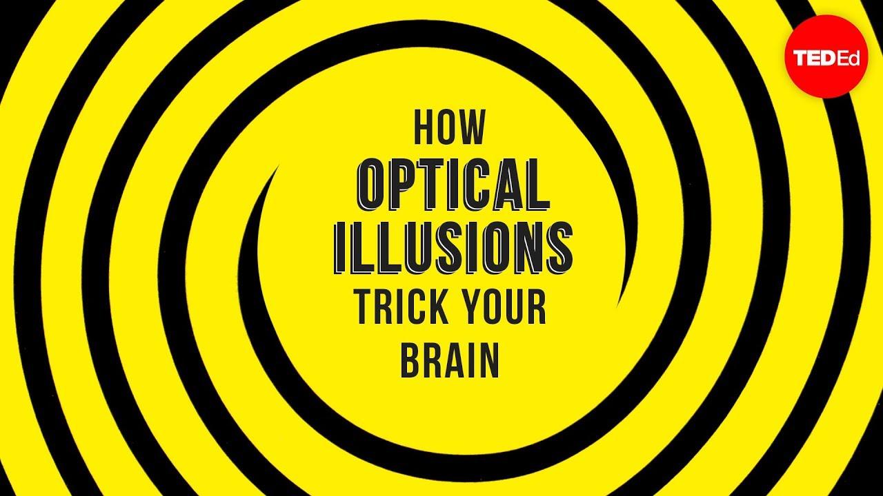 optical illusions school presentation # 21