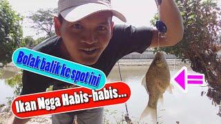 Jangan Baper !!! - Spot Nilem / Melem Ngga Habis-habis Ikanya.