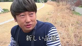 インタビューの全容はhonto+LP(3月号)から!⇒http://honto.jp/artic...