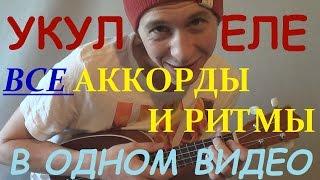 �������� ���� Укулеле - все аккорды и ритмы для укулеле в одном видео! ������