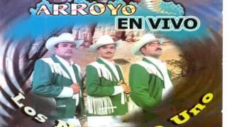 Popurri - Los Ciclones Del Arroyo EN VIVO