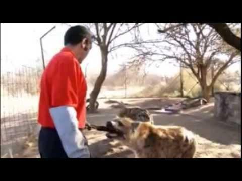 OUR COOL PRESIDENT: SIR SERETSE KHAMA IAN KHAMA HANGING WITH THE ANIMALS