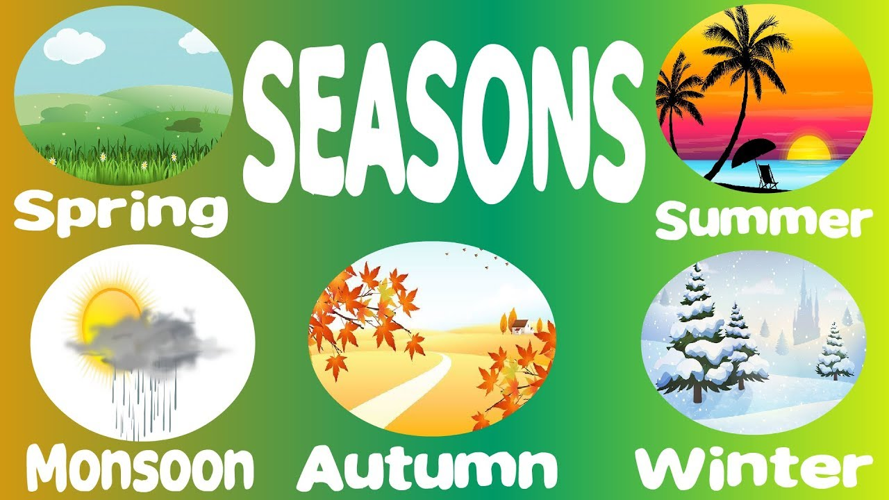Learn seasons name and picture for nursery|Seasons on Earth|Four Seasons in  the Year