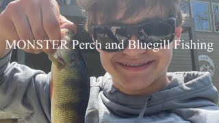 Fishing for Perch and MONSTER Bluegill at a PRIVATE Pond