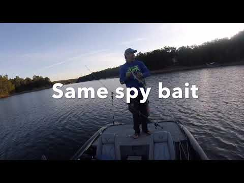 Fall Bass Fishing Smith Lake