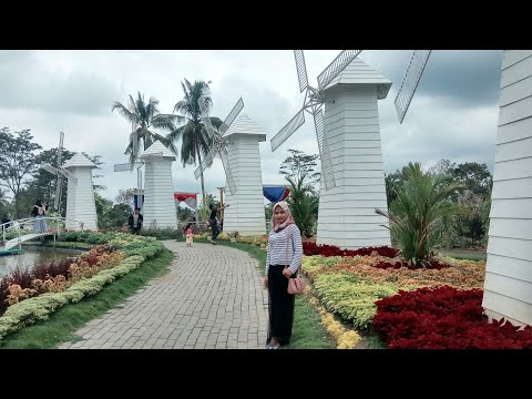 alamanda-jogja-flower-garden---wisata-baru-di-sleman-yogyakarta