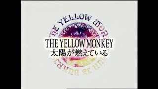 THE YELLOW MONKEY – 太陽が燃えている https://tym.lnk.to/discography...