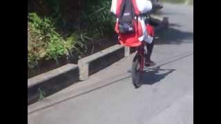 longest wheelie on bicycle (fearless riders)