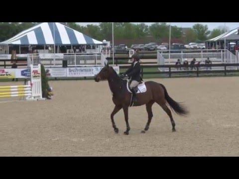 Kentucky Gentleman ridden by Kathleen Upham Wright--Medium Ch/Ad Jumpers (First Round)