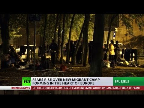 Fears rise over new migrant camp forming in Brussels