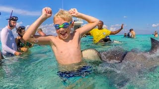 The Stingray Bit Me!!!