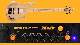 Markbass Little Mark 250 Black Line - DI SOUND TEST