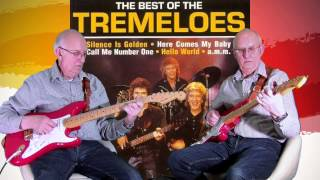 Silence is golden - The Tremeloes - Instro cover by Dave Monk