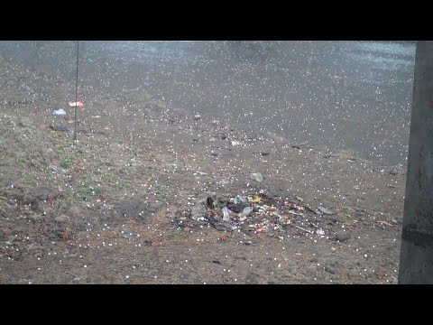 Hailstorm - damages crops in Shobhapur villages - Mohan reports for IndiaUnheard
