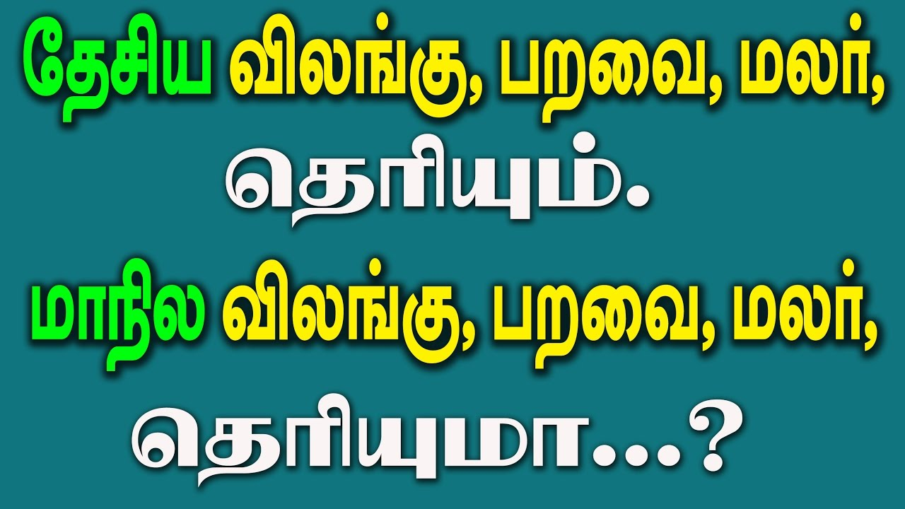 We Should Know Symbols Of Tamilnadu And Also Symbols Of India Youtube
