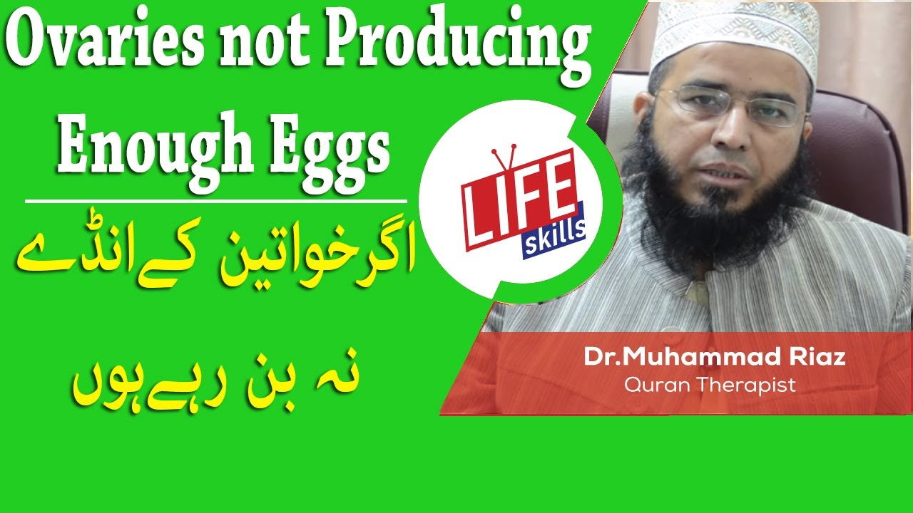 Ovaries not producing enough eggs? Treatment with Quran Therapy | Life  Skills TV