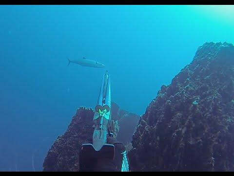 Chasse sous marine en Martinique - côte caraïbes / Spearfishing Martinique - West coast