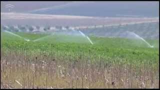 Actividades del SAR: Evaluación de riego por aspersión