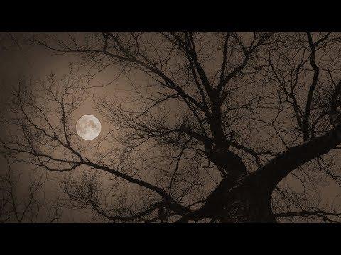月光 - 鬼束ちひろ(フル)