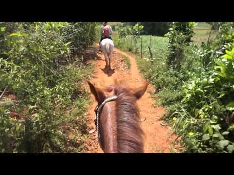 Horse Riding in Valle de Viñales. - Cuba. (Exploring Viñales Valley). - 2016 - [HD]