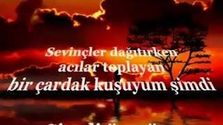 HALİT BİLGİÇ - DE GEL CANO