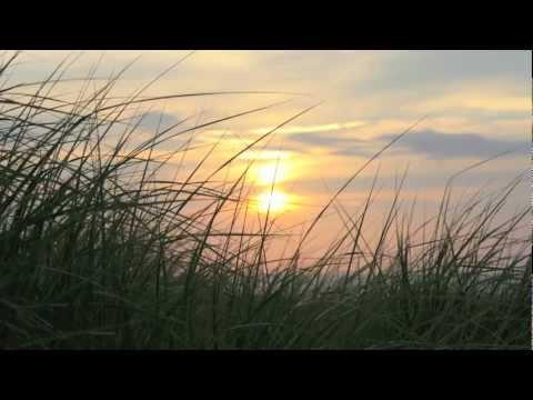 Around Us-Jonsi (AVPA Summer Project)