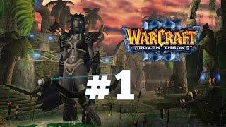 Warcraft .Прикол за Эльфов