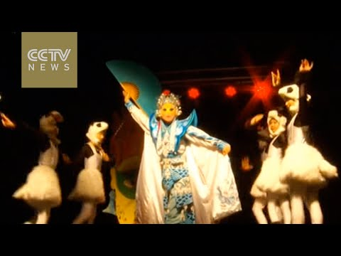 Chinese performers win applause at Seychelles carnival
