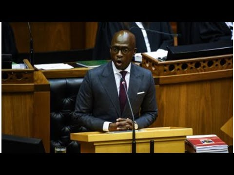 Gigaba on the warpath against long home affairs queues