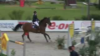 Madeleine Fischer - Quite Smart - HORSE Classics 2014