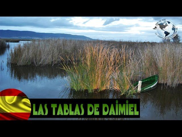 Parque Nacional Las Tablas de Daimiel, Ciudad Real, Spain. España 2014