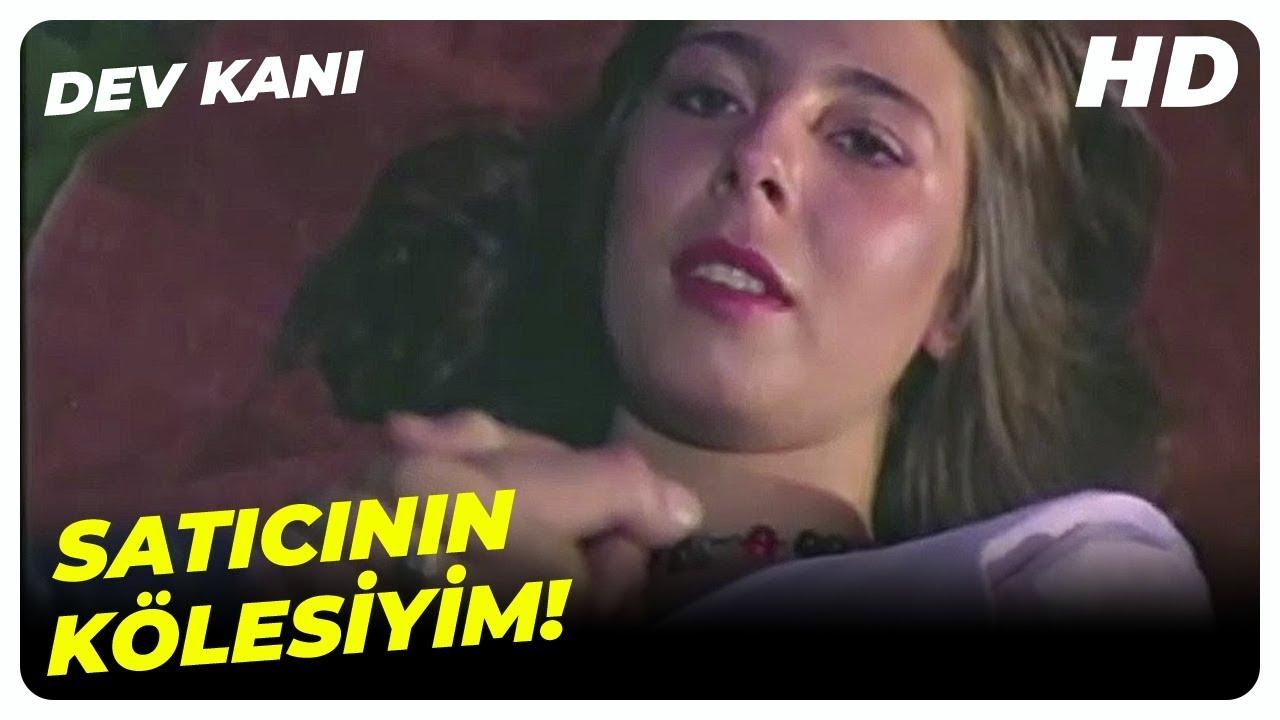 Murat, Küçük Bağımlı Kızla Başbaşa | Dev Kanı Cüneyt Arkın Türk Filmi