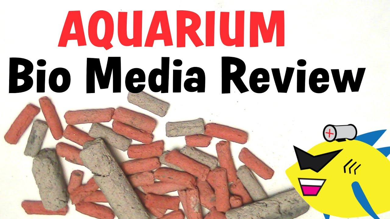 Aquarium filter media biofilter media review youtube for Diy biological filter