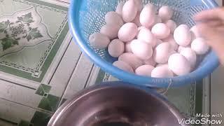 NƯỚNG BÁNH BÔNG LAN TRUYỀN THỐNG / Baked Traditional Sponge Cake /