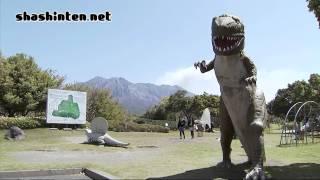 恐竜と桜 / 鹿児島市・桜島自然恐竜公園 / 2010.03.29