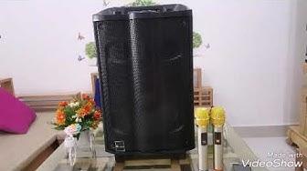 Loa gỗ Leong K180 âm thanh cực đỉnh tặng 2 mic k dây xịn hát nhẹ