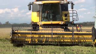 Rice Harvest 2013 in North West Italy - The Best of RB74ify (Motor Sound)