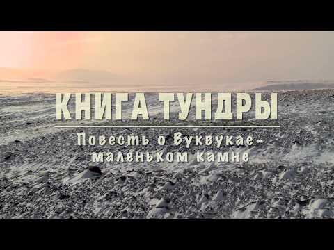 Книга Тундры. Повесть о Вуквукае – маленьком камне (2011) документальный фильм