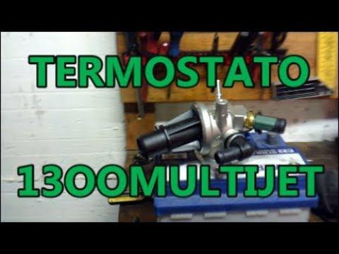 Tagliando Termostato 1300 Multijet sostituzione Fiat Idea