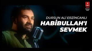 Dursun Ali Erzincanlı - Habibullahı Sevmek