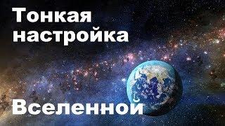Возникновение жизни | Тонкая настройка Вселенной