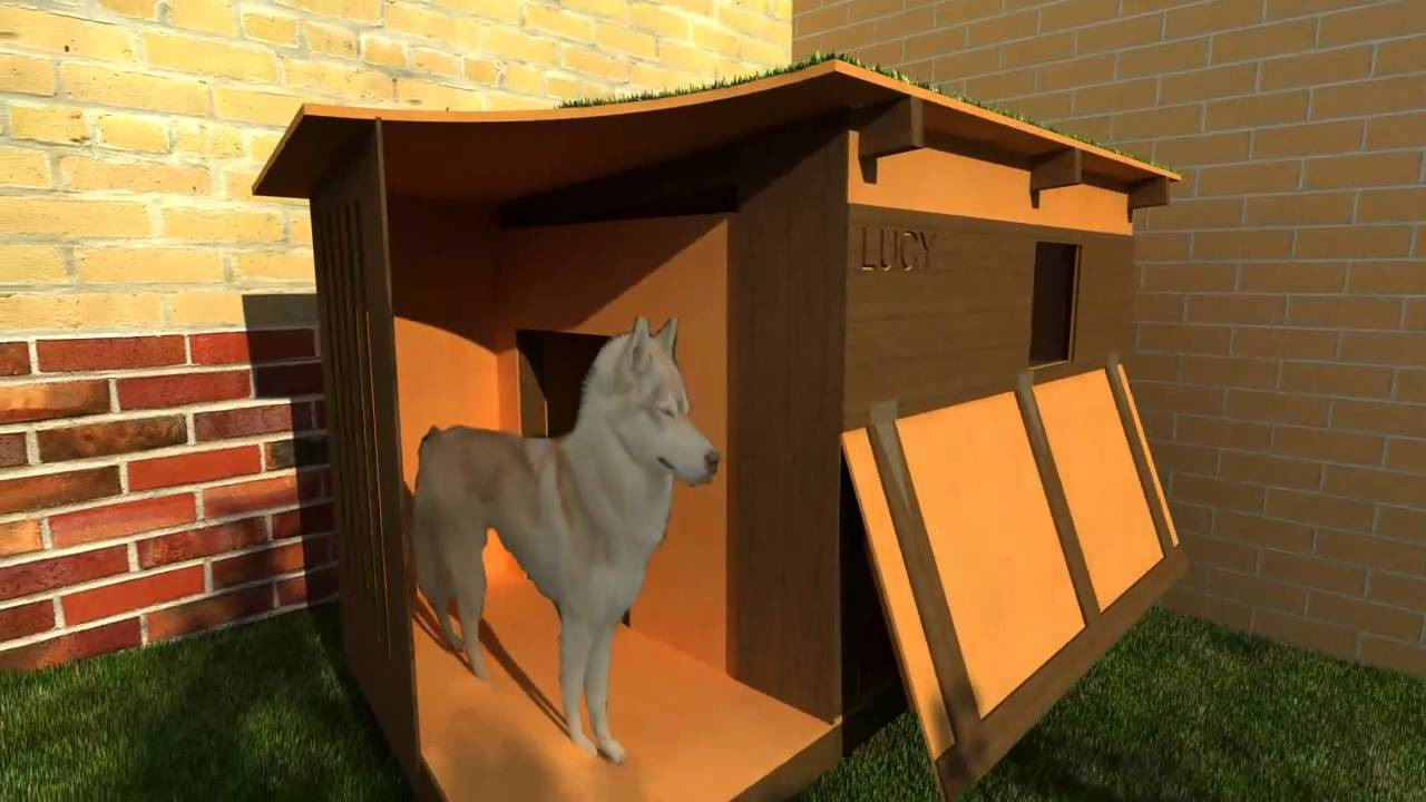 Youtube Videos On How To Make Dog Houses