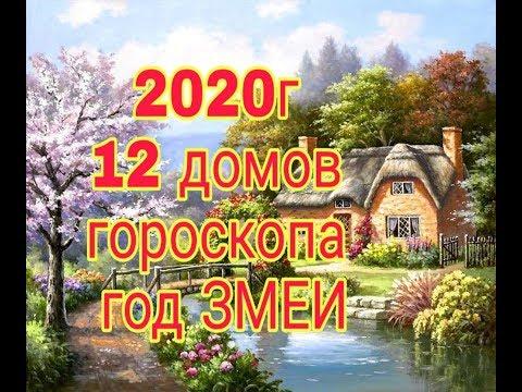 ГОД ЗМЕИ В 2020г.12 ДОМОВ ГОРОСКОПА