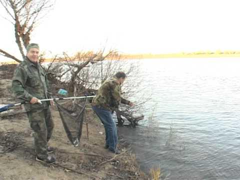 Рыбалка Астрахань Алимовский плёс ноябрь 2013