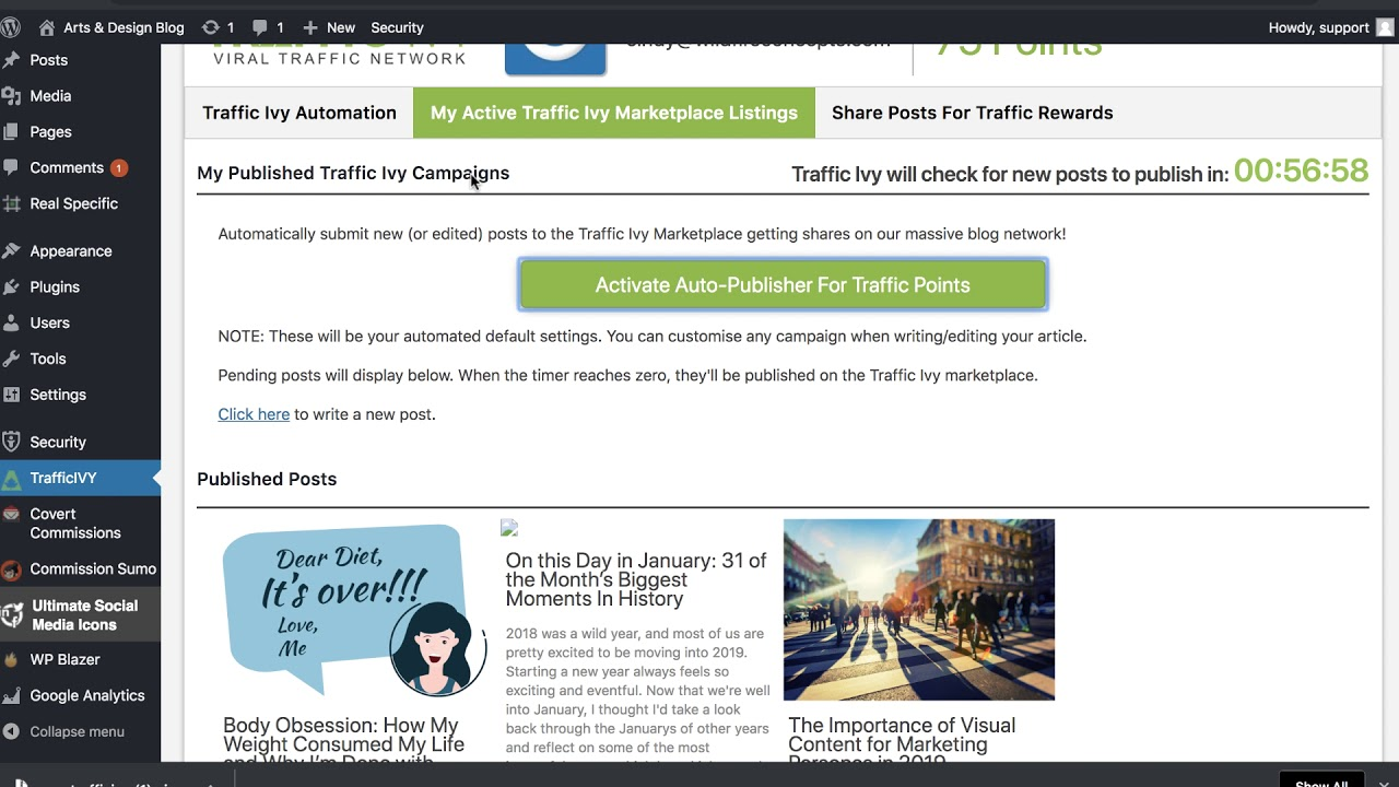 How to Install Traffic Ivy Plugin to Your Blog : Wildfire Concepts