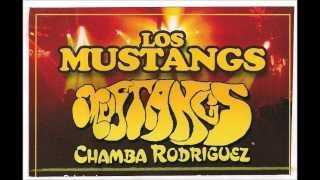 Los Mustangs Mrs  Robinson