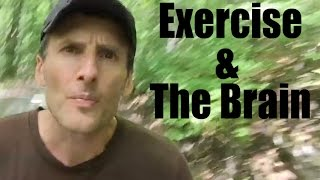 This is Your Brain... On Exercise